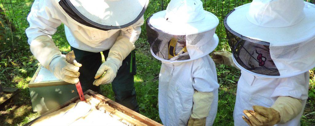Imker Thorsten beim Kita-Bienenausflug